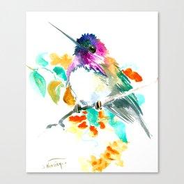 Cute Little Hummingbird Canvas Print