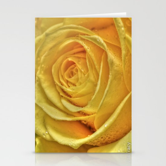 Gold Rose Stationery Cards
