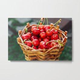 Wooden wicker basket with ripe red cherries Metal Print