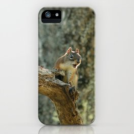 Brown Squirrel iPhone Case