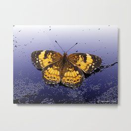 Pearl Crescent on Plaster Metal Print