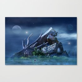 Cold Night Canvas Print