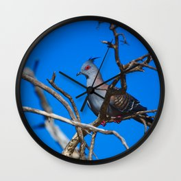 A Crested Pigeon, His Mohawk Thrown Back By The Wind Wall Clock