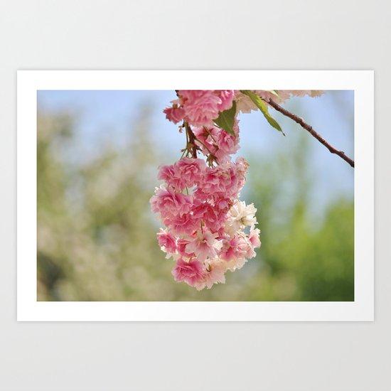 Spring Bundle Art Print