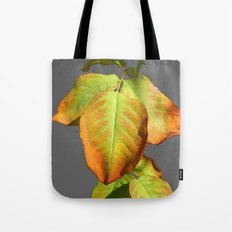 Autumn in suspension Tote Bag
