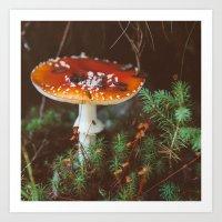 mushroom Art Prints featuring Mushroom  by crrissttian