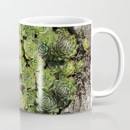 Succulents Lovers Coffee Mug