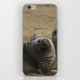 two elephant seal pups iPhone Skin