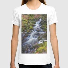 Autumn Stream T-shirt