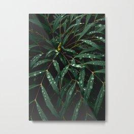 Resting Raindrops Metal Print