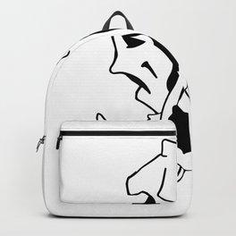 VALO BOAR Backpack