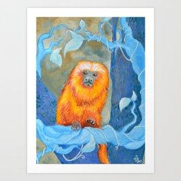Golden Tamarin Art Print
