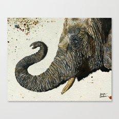 Elephant Cyril(Color Shower Background) Canvas Print