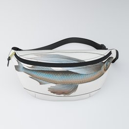 Marcus Elieser Bloch - Middle-Pinned Flying-Fish Fanny Pack