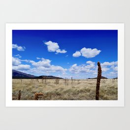 Road the Grand Canyon Art Print