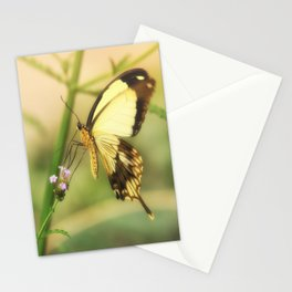 Exotic Butterfly natural beauty Stationery Cards