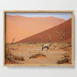 NAMIBIA ... Sossusvlei Oryx II Serving Tray