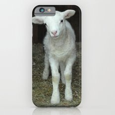 Newborn Lamb iPhone 6s Slim Case
