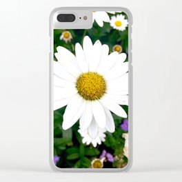 Zoomed in Daisy at the New York Botanical Gardens Clear iPhone Case