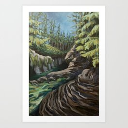 Lynn Canyon Art Print