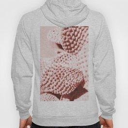 Cactus close-up in blush Hoody