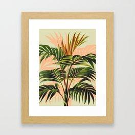 Botanical Collection 01-8 Framed Art Print