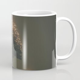 21 hour thanks Coffee Mug