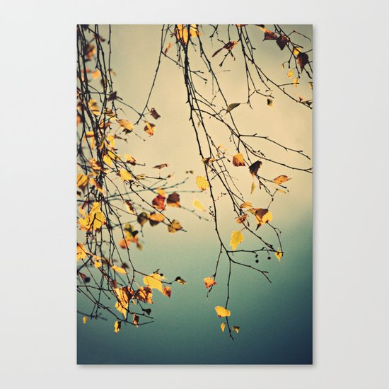 A poem from nature Canvas Print