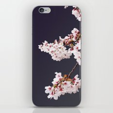 Cherry Blossoms (illustration) iPhone & iPod Skin