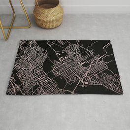 Wilkes-Barre Rose Gold and White Map Rug