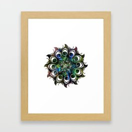 Peacock Shades Framed Art Print