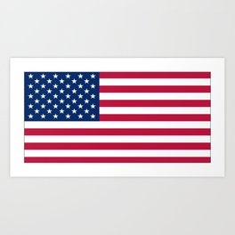 Flag of USA - American flag, flag of america, america, the stars and stripes,us, united states Art Print