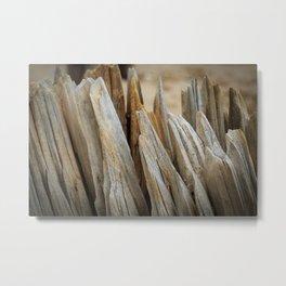 Wooden groynes Metal Print