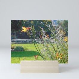 Lily 4 Mini Art Print
