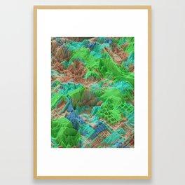 Biomes Framed Art Print