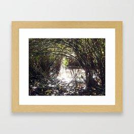 Lakeside Glimmer Framed Art Print