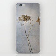 Still Life #3 iPhone & iPod Skin