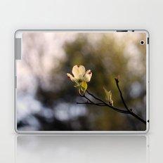 Vanima Laptop & iPad Skin