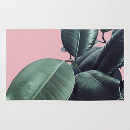 Ficus Elastica #14 #CoralBlush #decor #art #society6 Rug