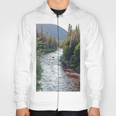 Forest Paradise Hoody