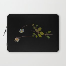 Cineraria Amelloides Mary Delany Delicate Paper Flower Collage Black Background Floral Botanical Laptop Sleeve