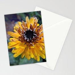 Frosty Marigold Stationery Cards