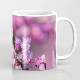Blooming Eastern redbud blossoms Coffee Mug