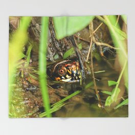 Box Turtle and Tadpoles Throw Blanket