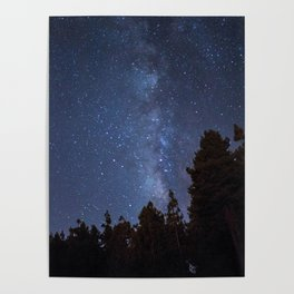 Starry night with the Milky Way in a pine forest Poster