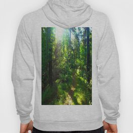 Sunshine Forest Hoody