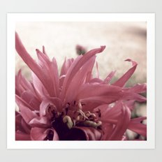 flower 2 Art Print