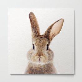 Baby Rabbit, Baby Animals Art Print By Synplus Metal Print