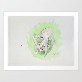 Caracal Skull Art Print