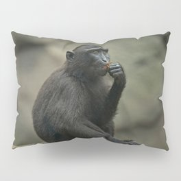 Celebes Crested Macaque Youngster Pillow Sham